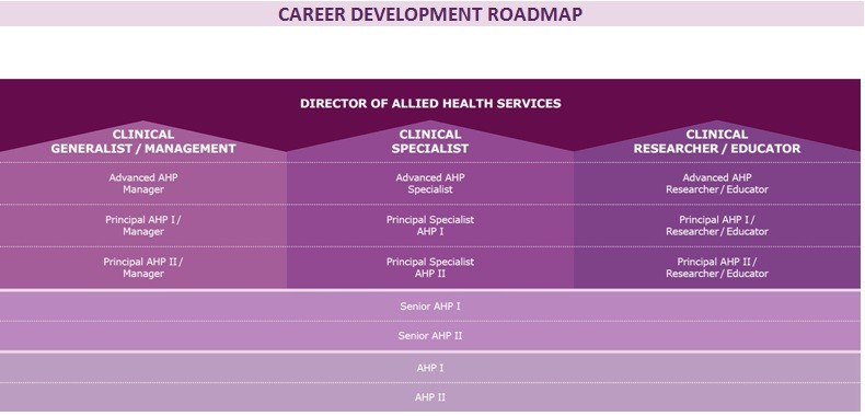 career development roadmap