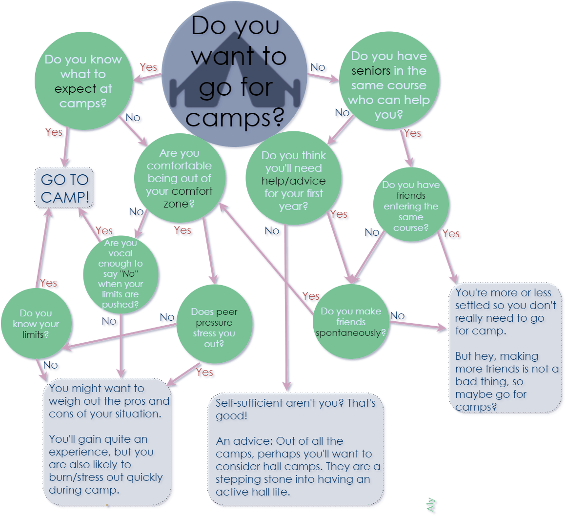 should you go for ntu freshmen camps flowchart camp