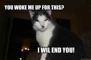 woke up annoyed