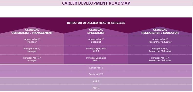 career development roadmap