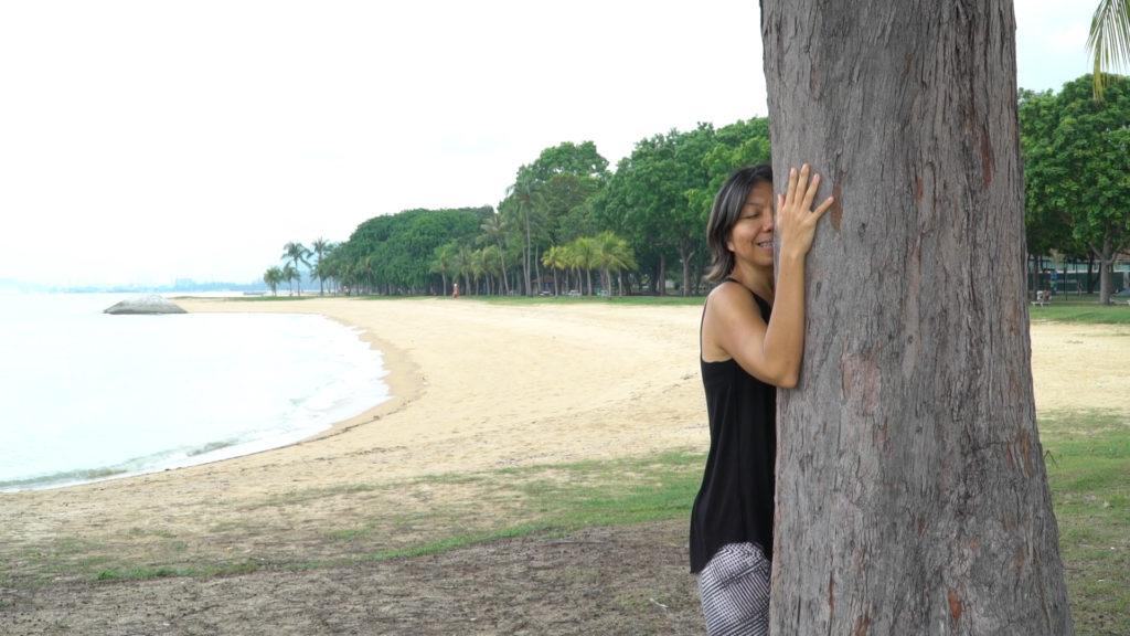 tree20