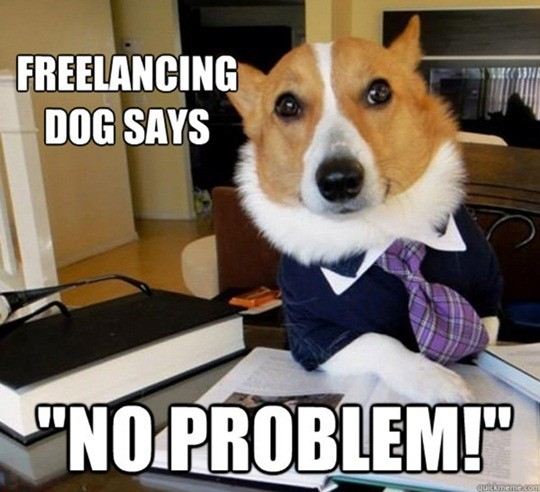 freelancing dog says